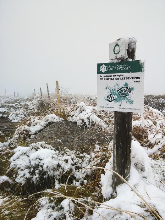Le Gazon du Faing, zone protégée
