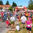 Semi-Marathon du Vignoble d'Alsace 2017