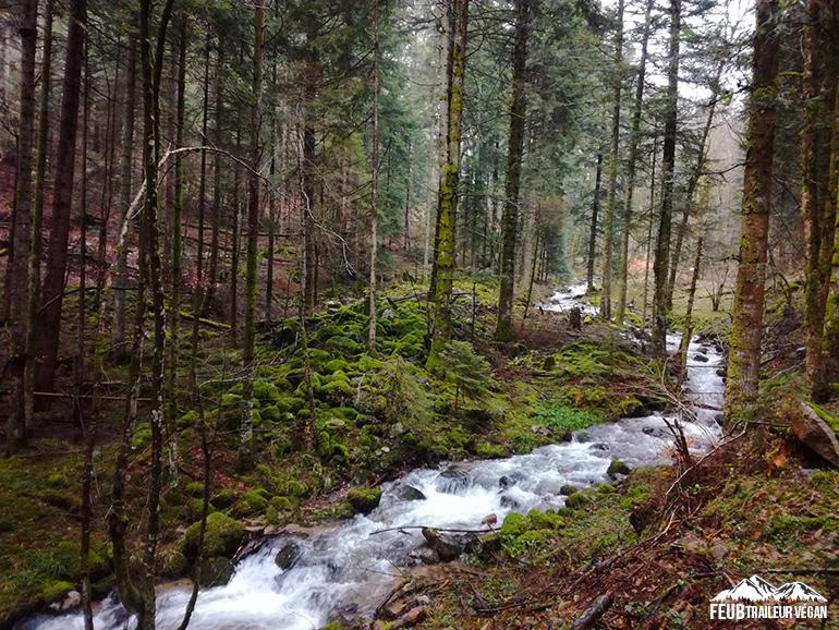 Trail dans les forêts vosgiennes. Clefcy défilé de Straiture vers Squainfaing - feub.net
