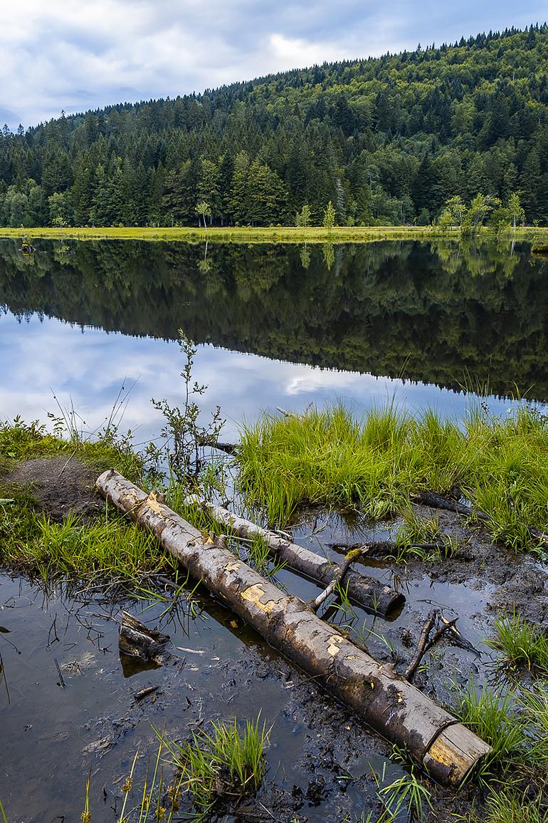 Soirée paisible au lac de Lispach