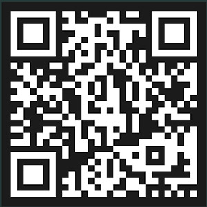 Don Bitcoin feub.net